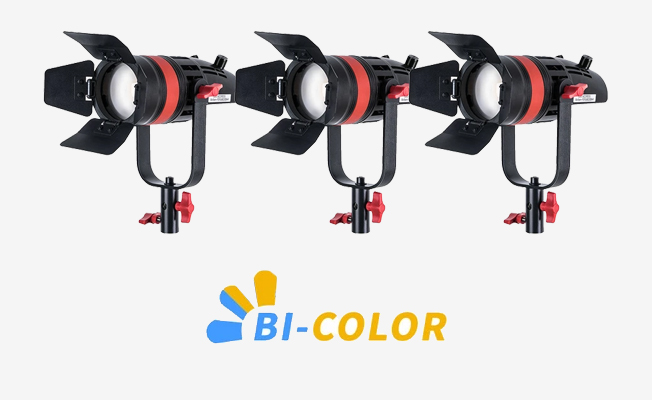 CAME-TV Bi-Color Led Set Detay